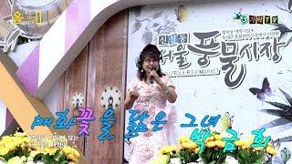 매화꽃을 닮은 가수 박금희-내사랑 매화