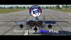 BlueFlag -  BuddySpike's Dynamic Campaign [DCS World]