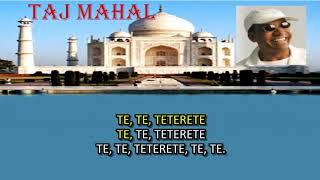 PLAYBACK JORGE BEN JOR TAJ MAHAL I