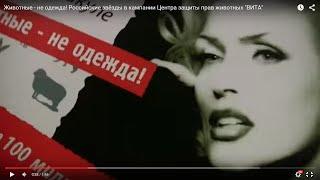 """Животные - не одежда! Российские звёзды в кампании Центра защиты прав животных """"ВИТА"""""""