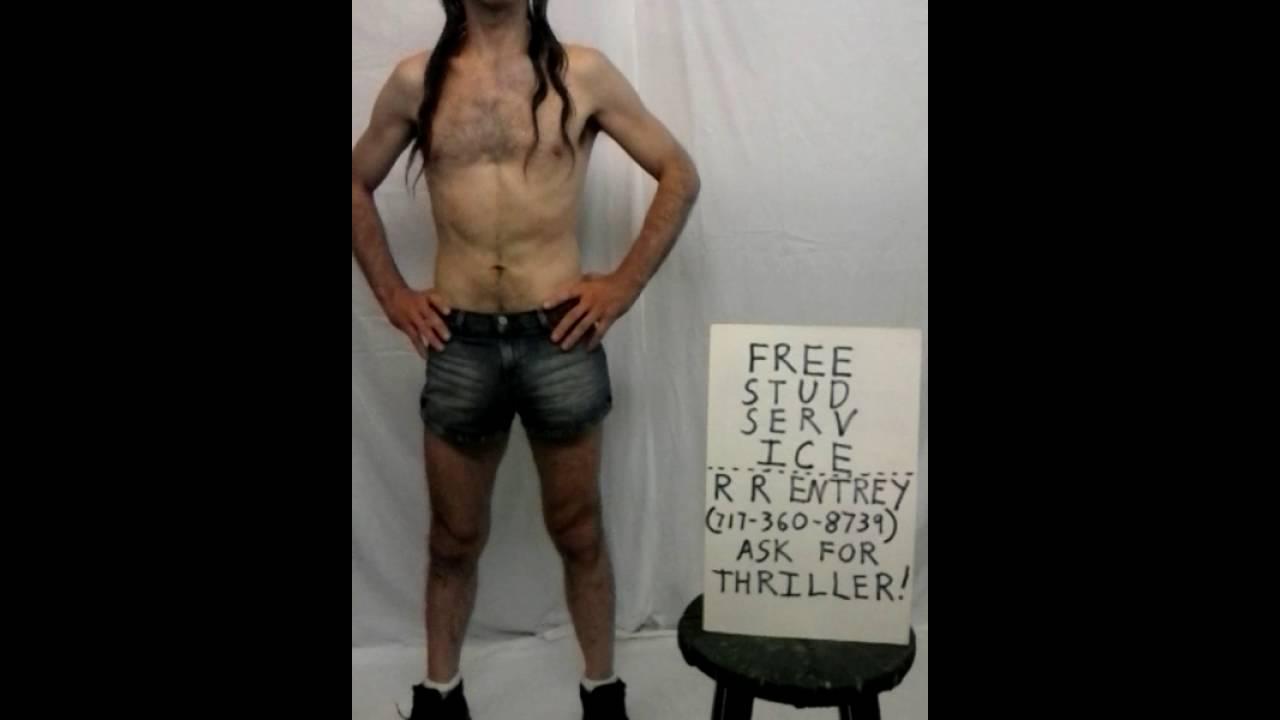 Free Stud