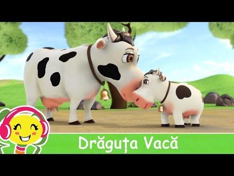 Draguta vaca