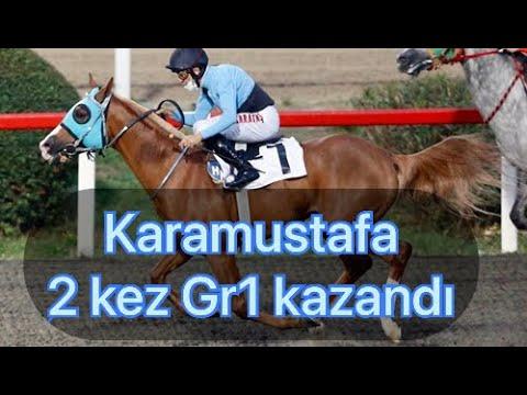 Karamustafa - Kanuni