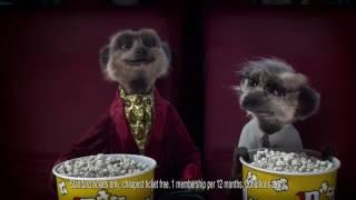Compare the Meerkat - Advert 71