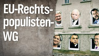 Die Rechtspopulisten-WG in Europa