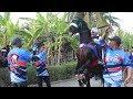 Rekor !! Karnaval Kuda Terpanjang Di Purworejo || Arak Arakan Kuda MI Desa Lubang Indangan