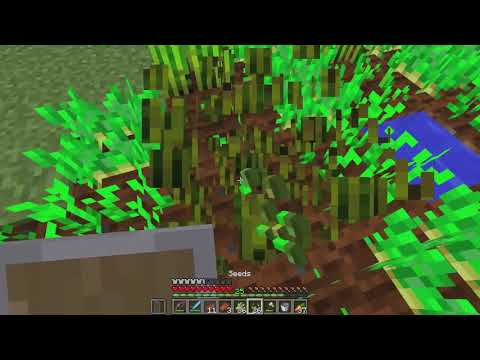 Minecraft Mindcrack - S6E84 - Waterfront Property