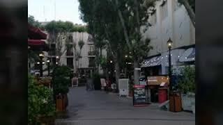 Лучшие рестораны в Дубае. Irish Village