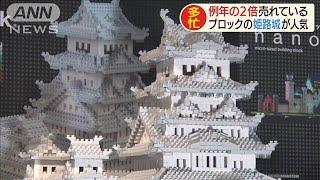 「ナノブロック」人気は姫路城 売り上げ去年の2倍(20/05/11)