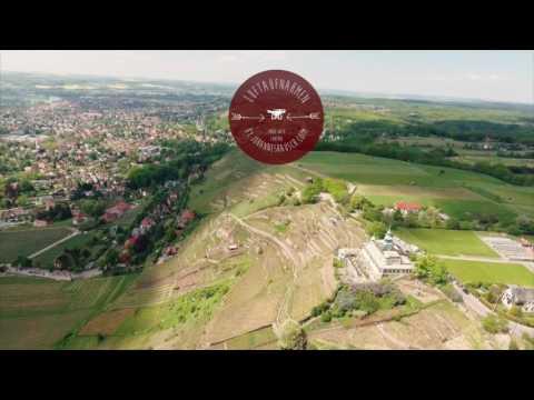 Spitzhaus Radebeul !  Luftaufnahmen Drohne Sachsen