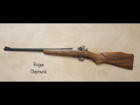 Rogue Chipmunk Trailer Youth 22 Rifle Intro