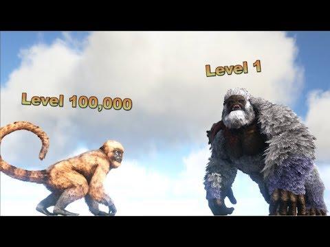 Mesopithecus (lvl 100,000) VS Megapithecus (lvl 1)    ARK: Survival Evolved    Cantex