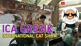 INTERNATIONAL CAT SHOW (ICA GRESIK) INDONESIAN CAT ASSOCIATION (21/07/2019)