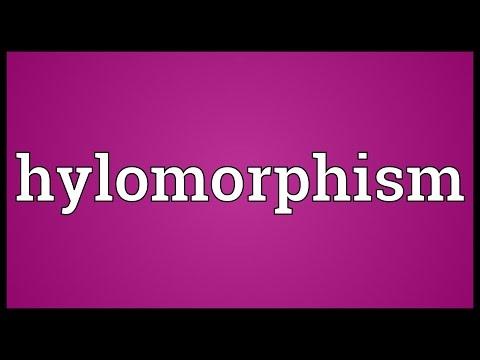 Header of hylomorphism