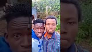 MCA Tricky from Churchill Show and Desagu CRACKING RIBS