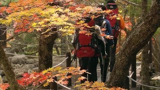지리산의 다양한 생명과 가을 풍경!
