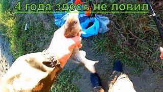 Ловля карася. Рыбалка в Краснодаре р. Протока.