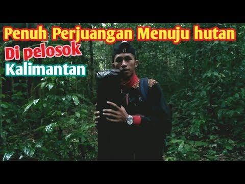 Bermalam Di Hutan Pedalaman Kalimantan