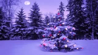 Chúa Đã Viếng Thăm | Nhạc Thánh Ca | Nhạc Noel