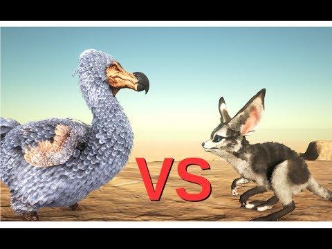 Dodo VS Jerboa    ARK: Survival Evolved    Cantex