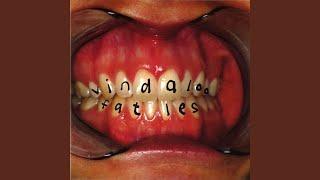Vindaloo (Extended Mix)