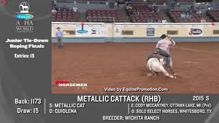 Metallic Cattack - 2020 AQHA World Show - Junior Tie Down Roping - 3rd Place