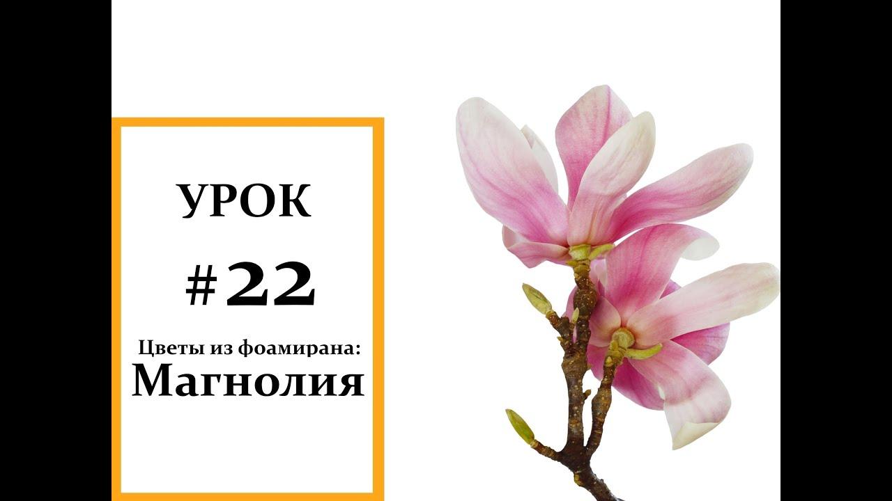 Магнолия мастер класс, Фоамиран цветы, Мастер класс из ...