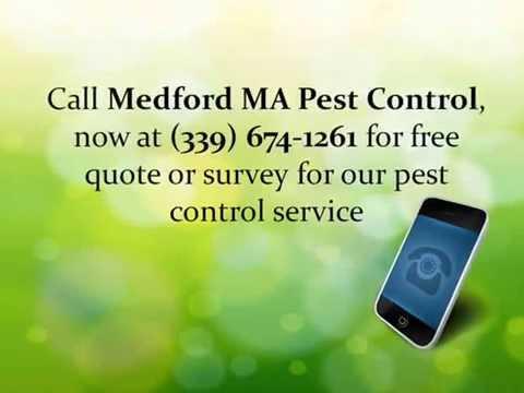 Medford MA Pest Control   Pest Control Service Medford MA   Medford MA Exterminator