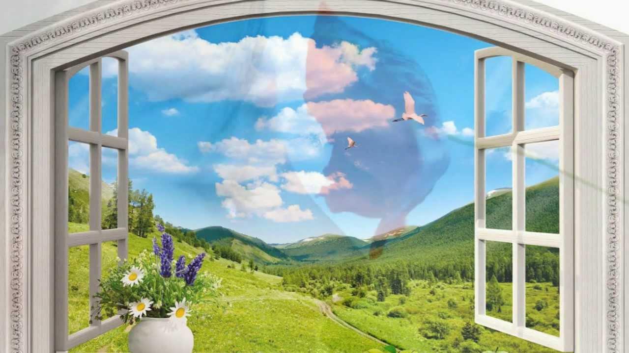 Картинки окно в природу, поздравления