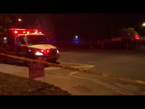 Fire set behind Mandeville Beer Garden in Sarasota