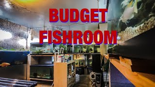 Cost of Building a Fish Room
