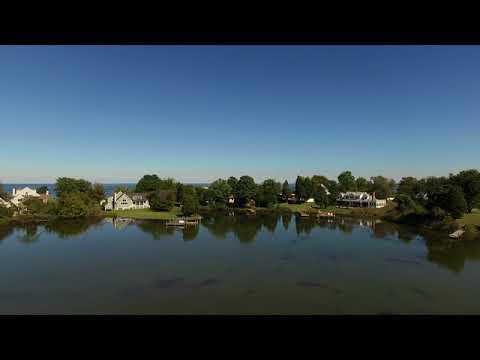 Little Magothy River SAV