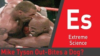 Can Mike Tyson Out-Bite an Attack Dog? | Sport Science