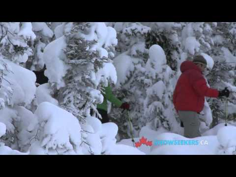 Lake Louise - Banff National Park - The SnowShow -...
