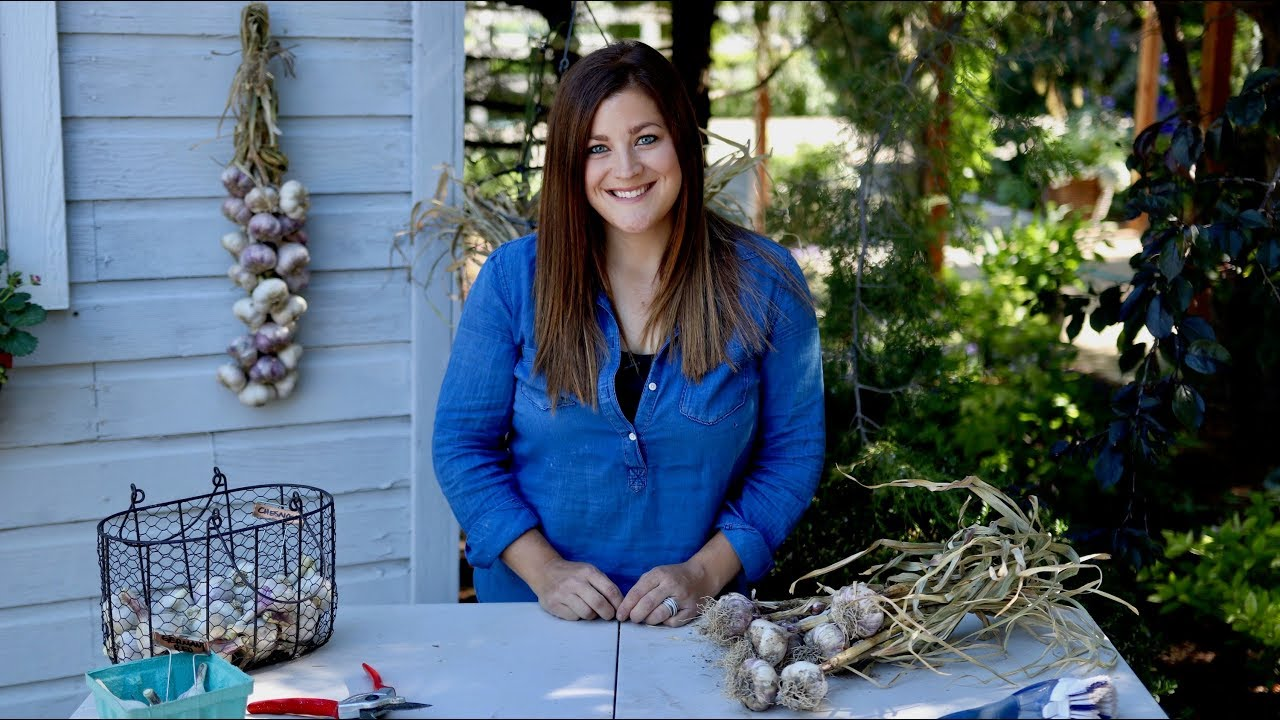 curing-storing-and-braiding-garlic-garden-answer