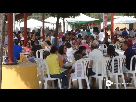 VÍDEO: Ya conocemos el programa de la Feria Real del Valle 2019. Te lo contamos aquí.