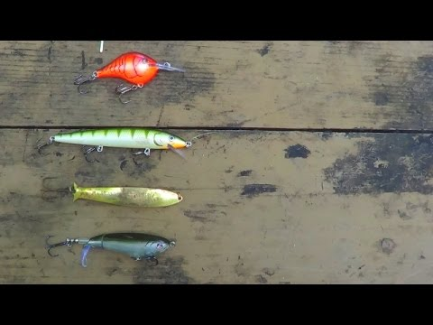Types Of Fishing Lures Explained