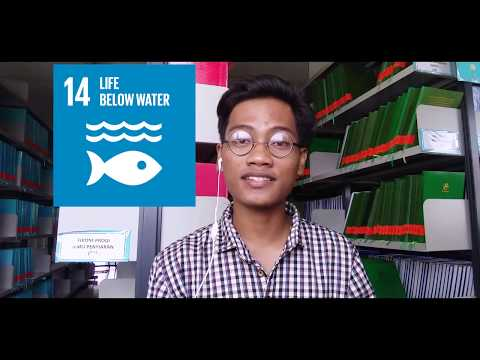 Sustainable Development Goals   International Public Speaking Competition and Workshop   JCI JAKARTA