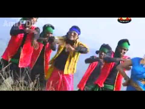 Hum To Re Aadivasi 2014 full HD video Song(www.Npuri)