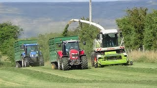 Fell Silage - Picking Up Grass with Claas Jaguar 890 with NH and MFs in support - Silage 2018