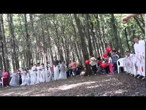Sinop İli Gerze İlçesi Yamacık Köyü 2014 Yılı Piknik Şöleni