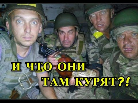 Киев: Мы Сорвали Российскую Военную Агрессию! Бравые Херои!
