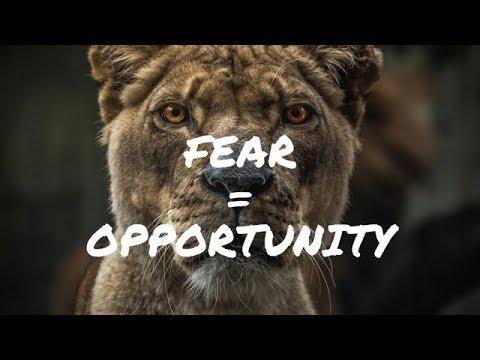 fear-=-opportunity-(2019)