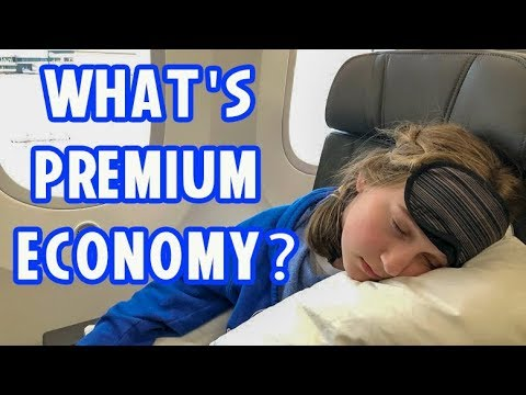 Premium Economy Review! American Airlines For Japan Trip Home