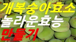 개복숭아효능, 개복숭아효소 만들기, 만드는법, 먹는법