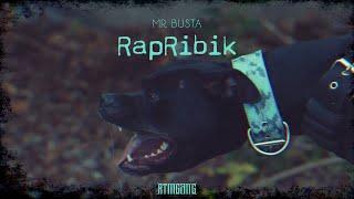 Смотреть клип Mr.Busta - Rapribik