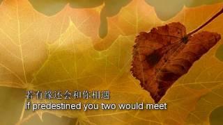 一片落叶 (A Fallen Leaf) Subtitled