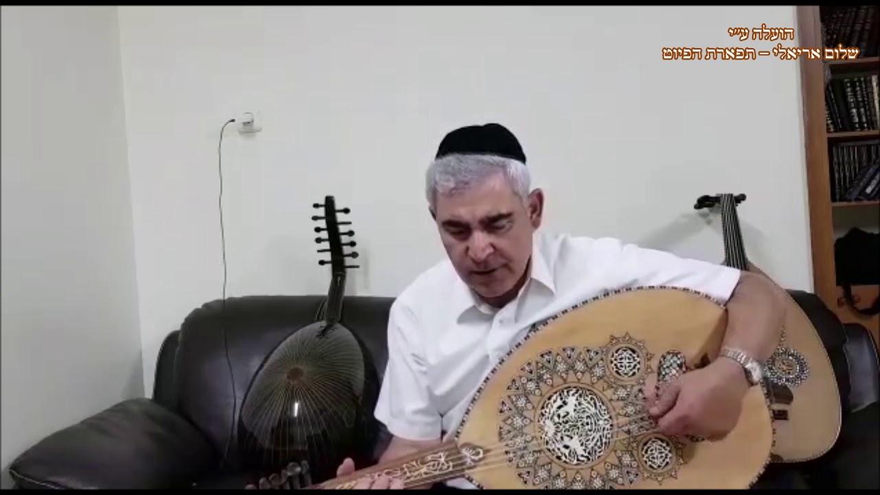 מהללך המוסיקאי משה חבושה מתוך שירת הבקשות של עדת החאלבים