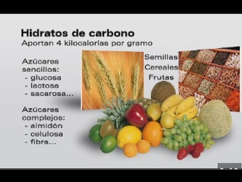 carbohidratos de absorcion lenta alimentos