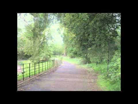 A woodland walk in Castlemilk - Starts at Croftfoot Drive